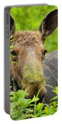 Mossy Moose Portable Battery Charger