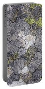 Mossy Mouldy Rock Texture Portable Battery Charger