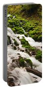 Mossy River Flowing. Portable Battery Charger