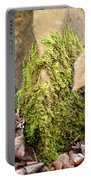 Mossy Rock Abstract 2013 Portable Battery Charger
