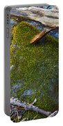 Mossy Rock Portable Battery Charger