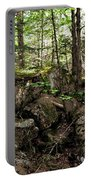 Mossy Rocks In The Forest Portable Battery Charger