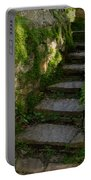 Mossy Steps Portable Battery Charger by Carla Parris