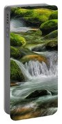 Mossy Stream E219 Portable Battery Charger