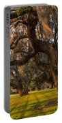 Mossy Trees At Sunset Portable Battery Charger