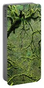 Mossy Trees Leafless In The Winter Portable Battery Charger
