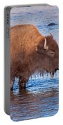 Mother And Calf Bison In The Lamar River In Yellowstone National Park Portable Battery Charger