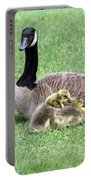 Mother And Young Portable Battery Charger