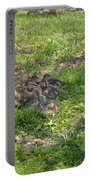 Mother Duck With Nest Portable Battery Charger