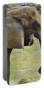 Mother Elephant Portable Battery Charger