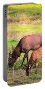 Mother Elk With Her Young Portable Battery Charger