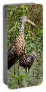 Mother Limpkin And Colt Portable Battery Charger