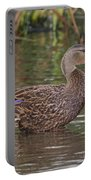 Mottled Duck Drake Portable Battery Charger