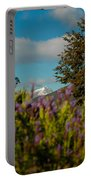 Mount Cook Portable Battery Charger