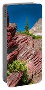 Mount Wilbur Portable Battery Charger