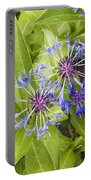 Mountain Bluet Flowers Portable Battery Charger