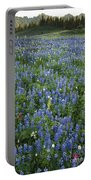 Mountain Flower Meadow Portable Battery Charger