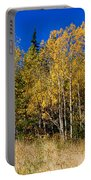 Mountain Grasses Autumn Aspens In Deep Blue Sky Portable Battery Charger