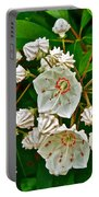 Mountain Laurel-maine Portable Battery Charger