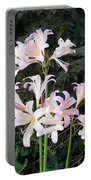 Mountain Lillies Portable Battery Charger