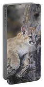 Mountain Lion Cub On Tree Branch Portable Battery Charger