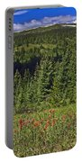 Mountain Meadow Scene Portable Battery Charger