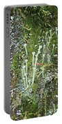 Mountain Moss Lichens And Fungi Portable Battery Charger