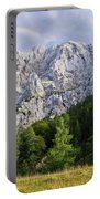Mountain Scene Portable Battery Charger