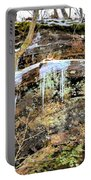 Mountain Spring Beauty  Portable Battery Charger