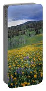 Mountain Spring Portable Battery Charger