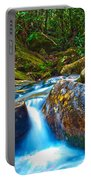 Mountain Streams Portable Battery Charger