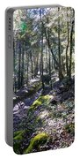 Mountain Walk 4 Portable Battery Charger