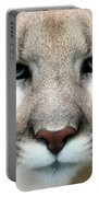 Mountian Lion Portable Battery Charger