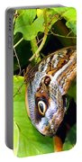 Mournful Owl Butterfly Wings Portable Battery Charger