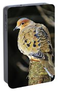 Mourning Dove On Post Portable Battery Charger
