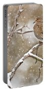 Mourning Dove Pictures 68 Portable Battery Charger