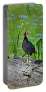 Mouthy Moorhen Portable Battery Charger