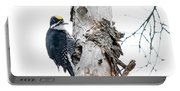 Mr. Black-bscked Woodpecker Portable Battery Charger