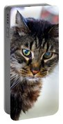 Mr. Lynx - Tabby - Cat Portable Battery Charger