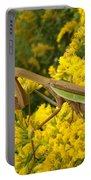 Mr. Mantis Portable Battery Charger