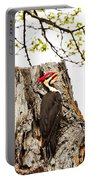 Mr.pileated Poses Portable Battery Charger