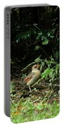 Ms Cardinal Picking Berries Portable Battery Charger