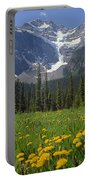 1m3613-mt. Patterson And The Snowbird Glacier Portable Battery Charger