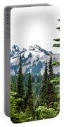 Mt. Rainier Framed Portable Battery Charger