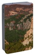 Mt. Rushmore With Beetlekill Ponderosa Portable Battery Charger