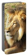 Mufasa Portable Battery Charger