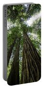 Muir Woods I Portable Battery Charger