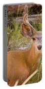 Mule Deer Portable Battery Charger