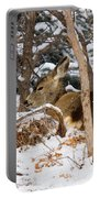 Mule Deer In Snow Portable Battery Charger