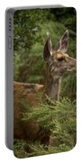 Mule Deer On Alert Portable Battery Charger